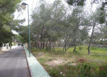 Thumbnail Land for sale in Pinar De Campoverde, Alicante, Spain