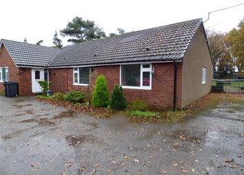 Thumbnail 4 bed detached bungalow for sale in Ghyllwood, Low Harker, Carlisle, Cumbria