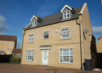 Thumbnail 5 bedroom detached house to rent in Badington Close, Peterborough