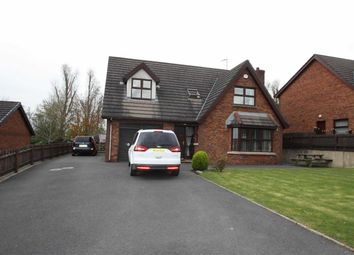 Thumbnail 4 bed detached bungalow to rent in Willow Bank, Ballynahinch, Down