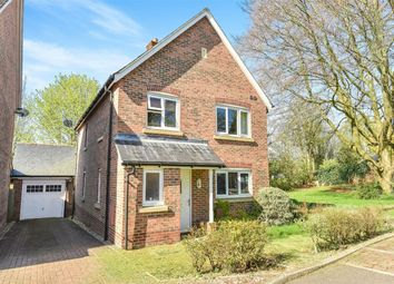 Thumbnail 4 bedroom detached house to rent in Thornton Close, Alresford