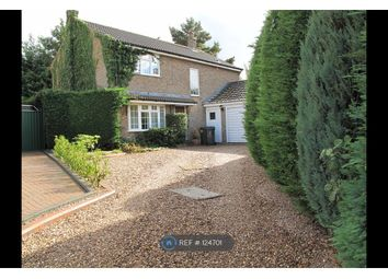 Thumbnail 4 bed detached house to rent in Pinfold Close, Oakham