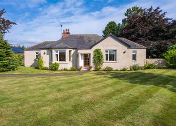 Thumbnail 2 bed property for sale in Viola Cottage, Carsie, Blairgowrie, Perthshire