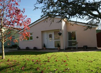 Thumbnail 2 bed detached bungalow for sale in Marldon Grove, Marldon, Paignton