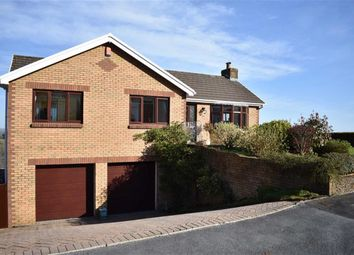 Thumbnail 3 bed detached house for sale in Brodawel, Llannon, Llanelli