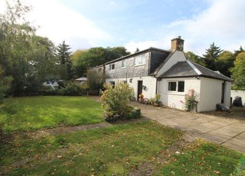 Thumbnail 2 bed semi-detached house for sale in Delny, Invergordon