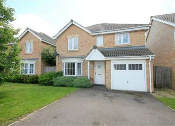 Thumbnail 4 bedroom detached house for sale in Powys Close, Corby, Northamptonshire