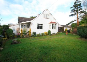 Thumbnail 5 bed property for sale in Broomfield Road, Herne Bay