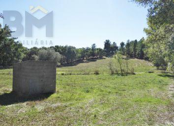 Thumbnail Finca for sale in Escalos De Baixo E Mata, Castelo Branco, Castelo Branco