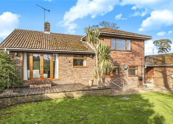 Thumbnail 4 bed detached house for sale in Winchester Road, Ropley, Hampshire