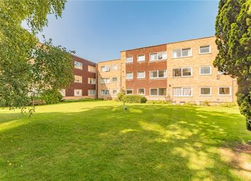 Riseley Road, Maidenhead, Berkshire SL6. 2 bed flat