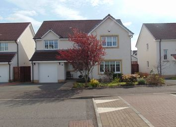 Thumbnail 4 bed detached house to rent in Meadowpark Avenue, Bathgate