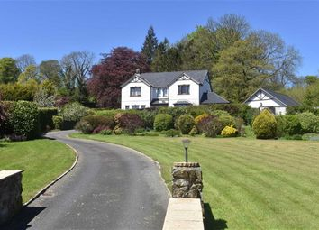 Thumbnail 4 bed detached house for sale in Alltyblacca, Llanybydder