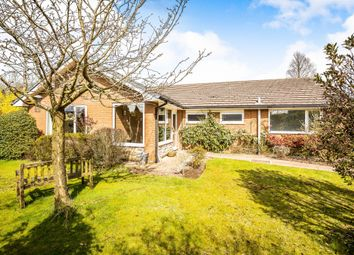 Thumbnail 4 bed detached bungalow for sale in The Spinney, Norley, Frodsham