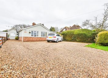 Thumbnail 4 bed detached bungalow for sale in Bridge Hall Road, Bradwell, Braintree, Essex