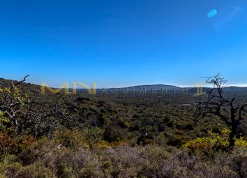 Thumbnail Land for sale in Cerro Do Leiria, Portugal