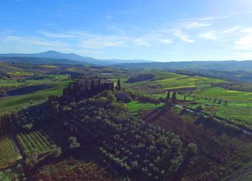 Thumbnail Château for sale in Montalcino, Montalcino, Italy