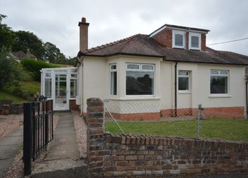 Thumbnail 4 bed semi-detached house to rent in Beechhill Place, Coupar Angus
