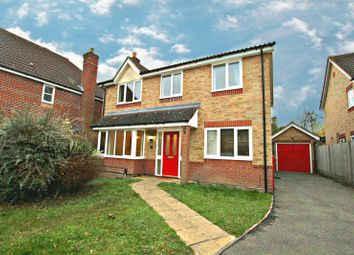 Thumbnail 4 bed semi-detached house to rent in Brettenham Crescent, Ipswich
