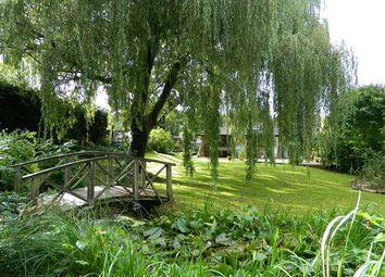 Pitsham Wood, Midhurst GU29
