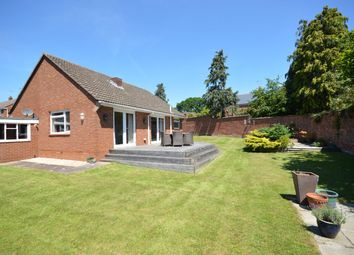 Thumbnail 2 bedroom bungalow for sale in Leighdene Close, St. Leonards, Exeter