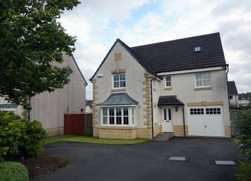 Enjoyable Find 5 Bedroom Properties For Sale In Glasgow Zoopla Home Interior And Landscaping Ologienasavecom