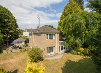 Thumbnail 4 bed detached house for sale in Cricketfield Road, Torquay