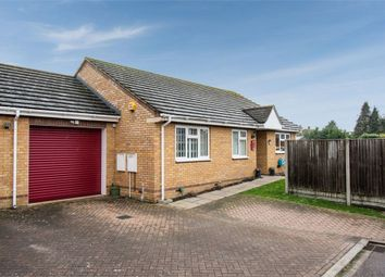 Thumbnail 3 bed detached bungalow for sale in Netherstones, Stotfold, Hitchin, Bedfordshire