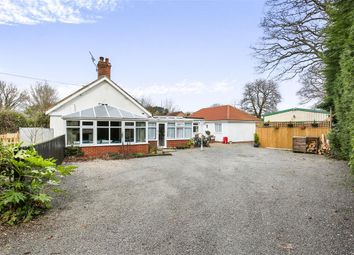Thumbnail 4 bedroom detached bungalow for sale in Reepham Road, Briston, Melton Constable
