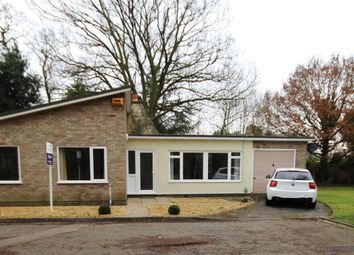Thumbnail 3 bed bungalow to rent in Abbots Close, Hemingford Abbots, Huntingdon