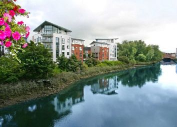 Thumbnail 3 bed apartment for sale in 29 Fishermans Quay, Grove Island, Corbally, Limerick