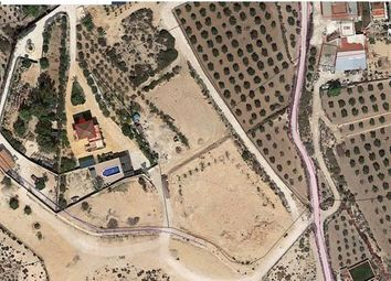 Thumbnail Land for sale in Elche, Elche, Spain