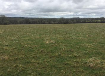 Thumbnail Farm for sale in Dolton, Winkleigh