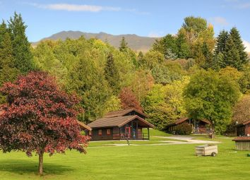 Thumbnail 2 bed lodge for sale in Fork Tree Lodge, Loch Tay Highland Lodges, Killin