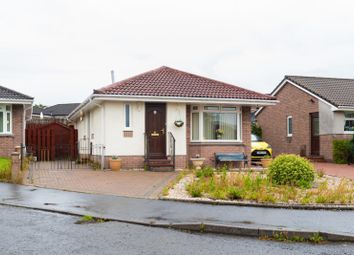 Thumbnail 2 bed bungalow for sale in Doo'cot Brae, Alloa