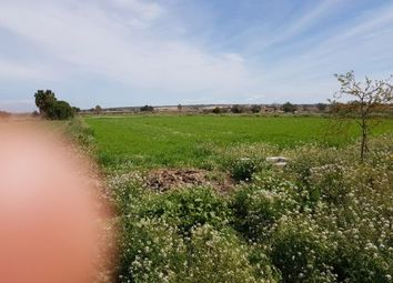 Thumbnail Land for sale in San Fulgencio, San Fulgencio, Spain