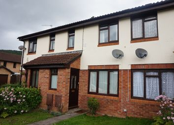 Thumbnail 2 bed terraced house for sale in The Newlands, Mardy, Abergavenny