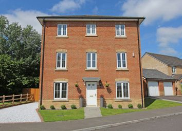 Thumbnail 6 bed detached house for sale in Amey Gardens, Totton, Southampton