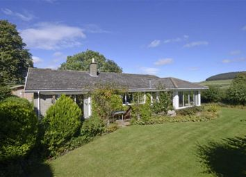 Thumbnail 3 bed detached bungalow for sale in Old Road, Chatton, Northumberland