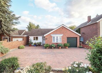 Thumbnail 4 bed detached bungalow for sale in East Road, Langford, Biggleswade, Bedfordshire