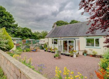 Thumbnail 3 bed cottage for sale in Moniaive, Thornhill