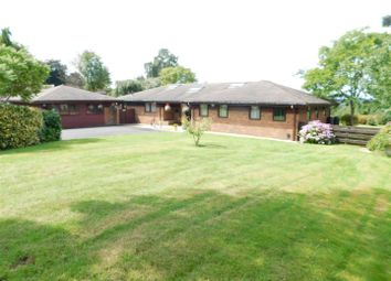 Thumbnail 4 bed detached bungalow for sale in Whitehill Road, Kidderminster