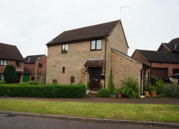 Thumbnail 3 bed detached house for sale in Cannell Road, Loddon, Norwich