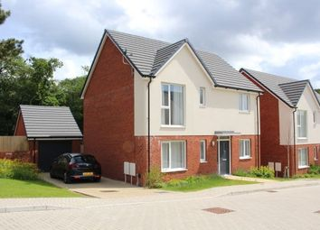 Thumbnail 4 bed property to rent in Clos Coed Collings, Swansea