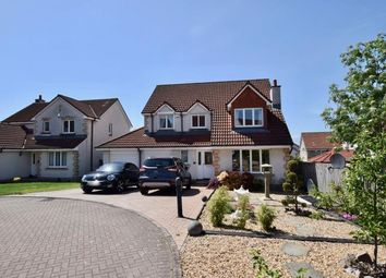 Thumbnail 4 bed detached house to rent in Dovecot Way, Dunfermline