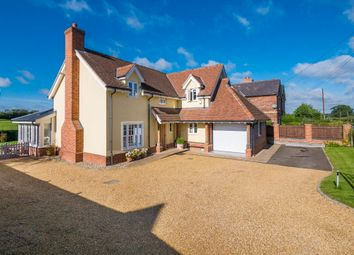 Thumbnail 4 bedroom detached house for sale in Acton, Sudbury, Suffolk