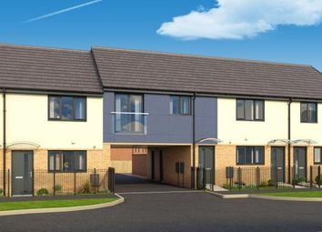 "Thumbnail 2 bed property for sale in ""The Hartley At Roman Fields "" at Chamberlain Way, Peterborough"