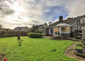 4 bed detached bungalow for sale in Walston Close, Wenvoe, Cardiff CF5