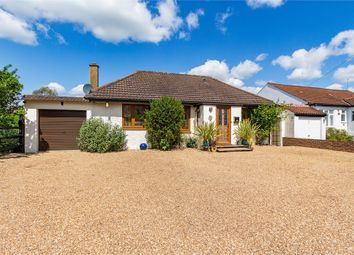Thumbnail 4 bed detached bungalow for sale in Coppice Drive, Wraysbury, Berkshire