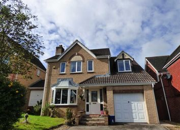 Thumbnail 4 bed detached house for sale in Fedw Wood, Chepstow
